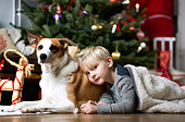 Boy and dog by Christmas tree - Stock Image - D554T0