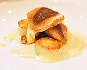 Fried John Dory & pilgrim scallops with curry sauce - Stock Image - B45FBF