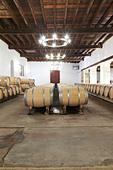 barrel aging cellar chateau trottevieille saint emilion bordeaux france - Stock Image - BEAW4A