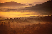 Rainforest at dawn (aerial), Cockscomb Basin, Belize - Stock Image - BFFP4D