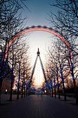 London Eye, London, UK - Stock Image - EKY146