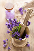mortar with fresh lavender - Stock Image - D3PGPT