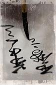 Asian brush with script - Stock Image - BM03RW