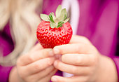 Close-up view of girl (2-3) showing strawberry - Stock Image - E3M363