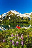 Person canoeing in small lake in Portage Valley of Chugach National Forest during Spring in Southcentral Alaska - Stock Image - C2THWD