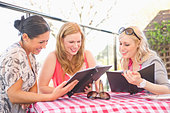 Friends having lunch together - Stock Image - CPDC40