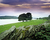GB CUMBRIA THE LAKE DISTRICT CONISTON WATER - Stock Image - BJX7YY
