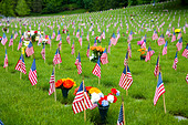 Memorial Flowers And Flags In A Graveyard In Oregon, USA - Stock Image - B4D59W