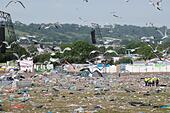 Glastonbury Festival, Somerset, UK. 29 June 2015. As the exodus from the festival site gets underway the clear up  begins and the seagulls move in for the pickings. © Tom Corban/Alamy Live News - Stock Image - EWMEEP