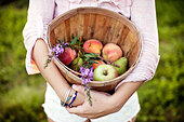 Young woman holding bucket with fruits, mid section - Stock Image - DT2CTF