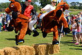 Hampshire, UK. 25th July, 2015. Jockeys and their mounts take a jump in a Damerham Derby 'horse' race at the Damerham Fair and Horticultural Show, Hampshire. The Fair, which took place on Saturday 25th July 2015, is held annually and this year fell on a dry sunny day between two very wet ones. © View42/Alamy Live News - Stock Image - EYBBHD