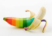 Multicolored banana - Stock Image - C8EDH5