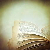 reading book - Stock Image - CRY12A
