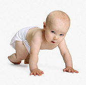Studio shot of baby crawling - Stock Image - AY6NEJ