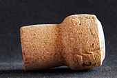 mytik technical champagne cork - Stock Image - BEAW63