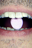 Closeup Portrait of a Scruffy Man Holding a Valentines Love Candy Heart in His Teeth Copy Space - Stock Image - B4AP49