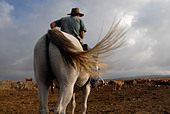 A Jewish cattle herder mounted on a horse in the Golan heights northern Israel - Stock Image - AN7MTW