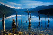 Lake Monowai, Fiordland National Park, Southland, South Island, New Zealand - Stock Image - BFT4H8