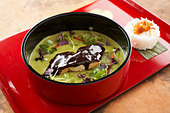 Green fish curry with chocolate glaze - Stock Image - BJJW6H