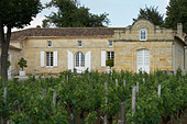 chateau trottevieille saint emilion bordeaux france - Stock Image - BEAW0G