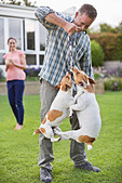 Man playing with dogs in backyard - Stock Image - D7Y6YK