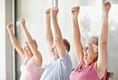 Senior's exercise class - Stock Image - BXE7XA