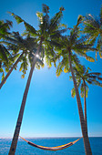 Hammock between palm trees on beach, Bali, Indonesia, Southeast Asia, Asia - Stock Image - BG3X91