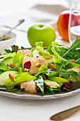 Apple,Grapefruit and Cranberry salad - Stock Image - CT0R8R