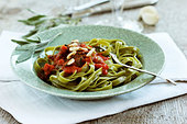 Spinach pasta with fried sage leaves in tomato sauce - Stock Image - BJK3TT