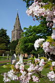 Church and spring blossom, Burton Joyce, Nottinghamshire, England, United Kingdom, Europe - Stock Image - CPE3GT