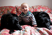 Baby sitting with dogs on sofa - Stock Image - D557DJ
