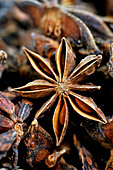 Star anise spice - Stock Image - D6HC1Y
