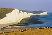 England, Sussex, Seven Sisters - Stock Image - CP5XWM
