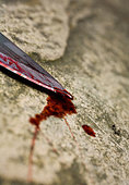 Bloody knife - Stock Image - B0NN06
